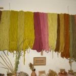 Lanas para alfombra teñidas con distintas plantas