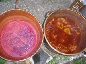 Cochi y cebolla